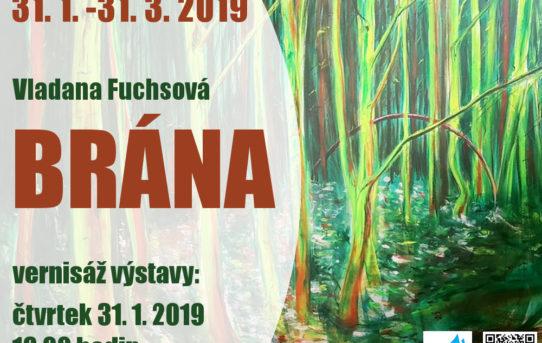 Pozvánka na výstavu do Místní knihovny Pavla Křížkovského Holasovice